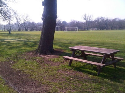 Amazing ground views at Dulwich Sports Ground London